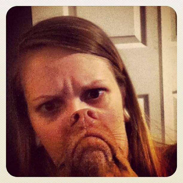 Dogbearding - 10 wirklich witzige Fotos von Menschen mit
