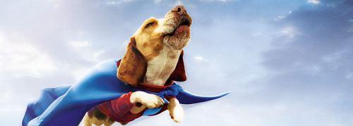 Underdog - der Film