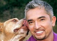 Interview mit Cesar Millan