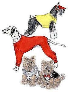Dessous für Hunde