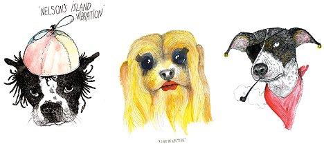 Witzige Hunde Portraits