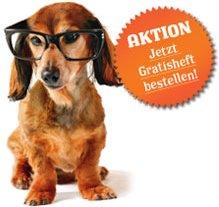 Hundemagazin Wuff jetzt gratis testen