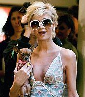 Hunde Show im britischen TV mit Paris Hilton