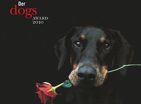 Dog Award 2009