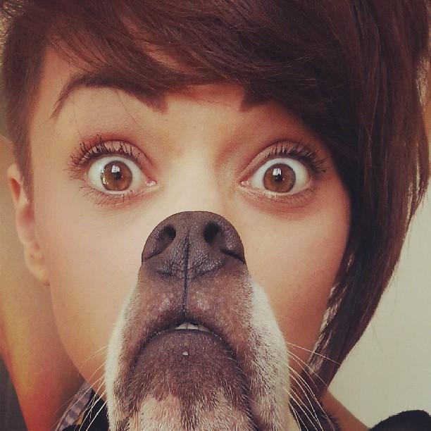 Dogbearding Foto 2