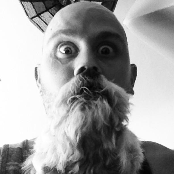 Dogbearding Foto 4