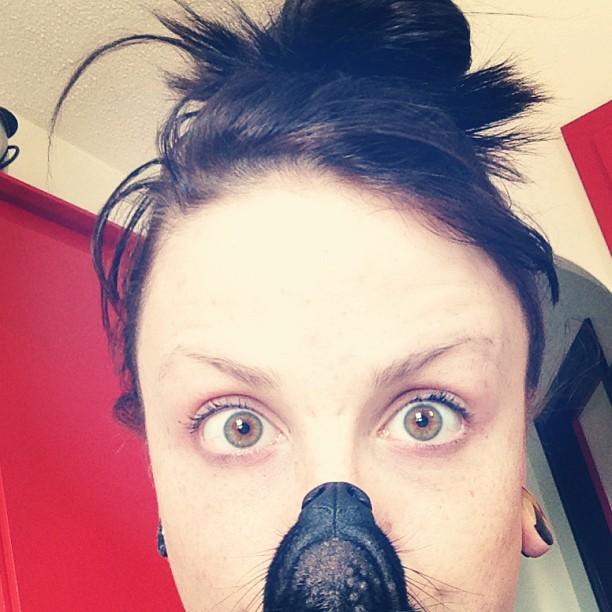 Dogbearding Foto 7