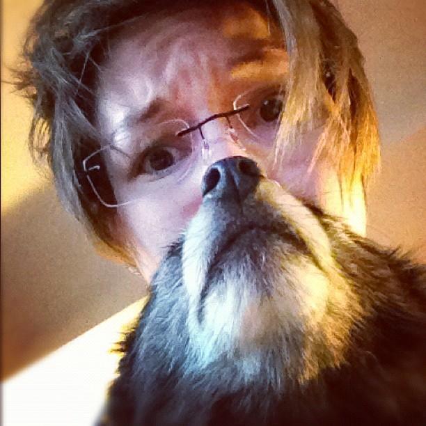 Dogbearding Foto 10