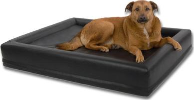 Wasserbett für Hunde