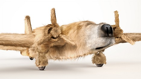 Ink Dogfighters Golden Retriever