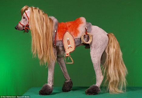 Pferde Pudel
