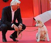 Richard Gere über Hunde