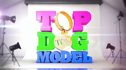 Top Dog Model auf Sixx
