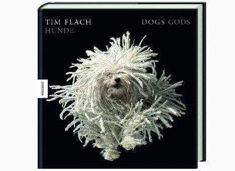 Tim Flach: Dogs